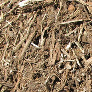 Oak Mulch